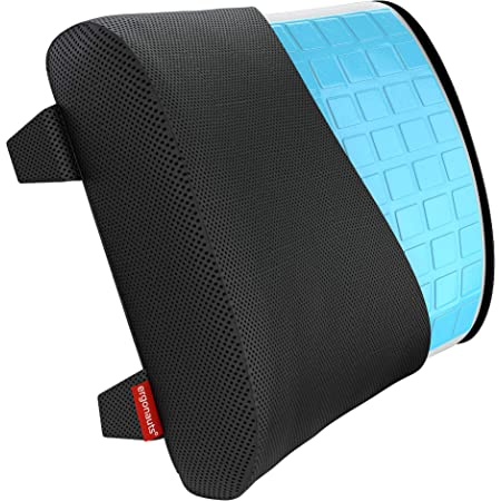 Posture Therapy Lumbar Support Cushion - Memory Foam, Ergonomic Back Support Pillow For Home, Office, Car, Travel - Relieve & Prevent Lower Back, Sciatica, Disc Pain