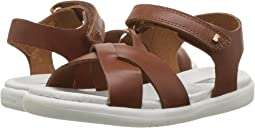 Bobux Kids - I-Walk Roman Sandal (Toddler)