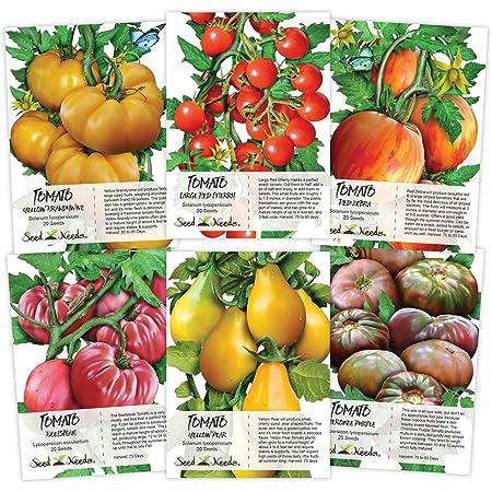 5 Tsunami Tomato Seeds-seeds-Vegetable seeds