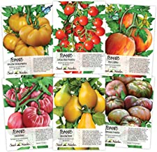Best colored tomato seeds Reviews