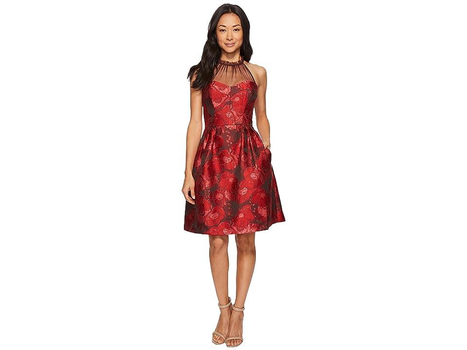 Maggy London Poppy Jacquard Halter Fit Flare Dress (Black/Rose) Women