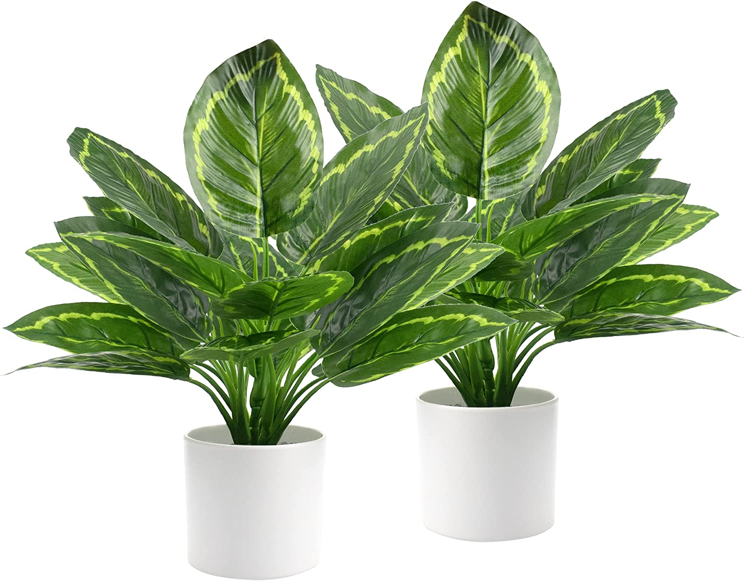 2 Pack Dieffenbachia Live Plant Artificial Hosta Plants Imitation Greenery Potted Faux Tree Leaves with Vase for Home Office Garden Balcony Shelf Decorations