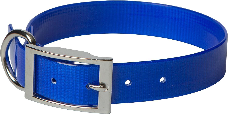 OmniPet 102DBL18 Sun Glow Regular Dog Collar, 3 4  x 18 , bluee