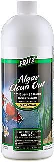 FritzPond - Algae Clean Out Algaecide - 32oz