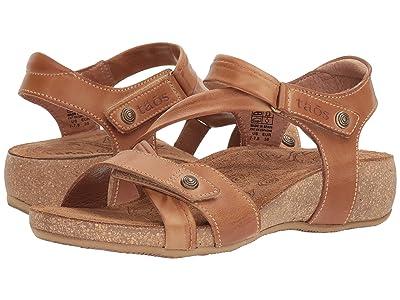 Taos Footwear Universe (Camel) Women