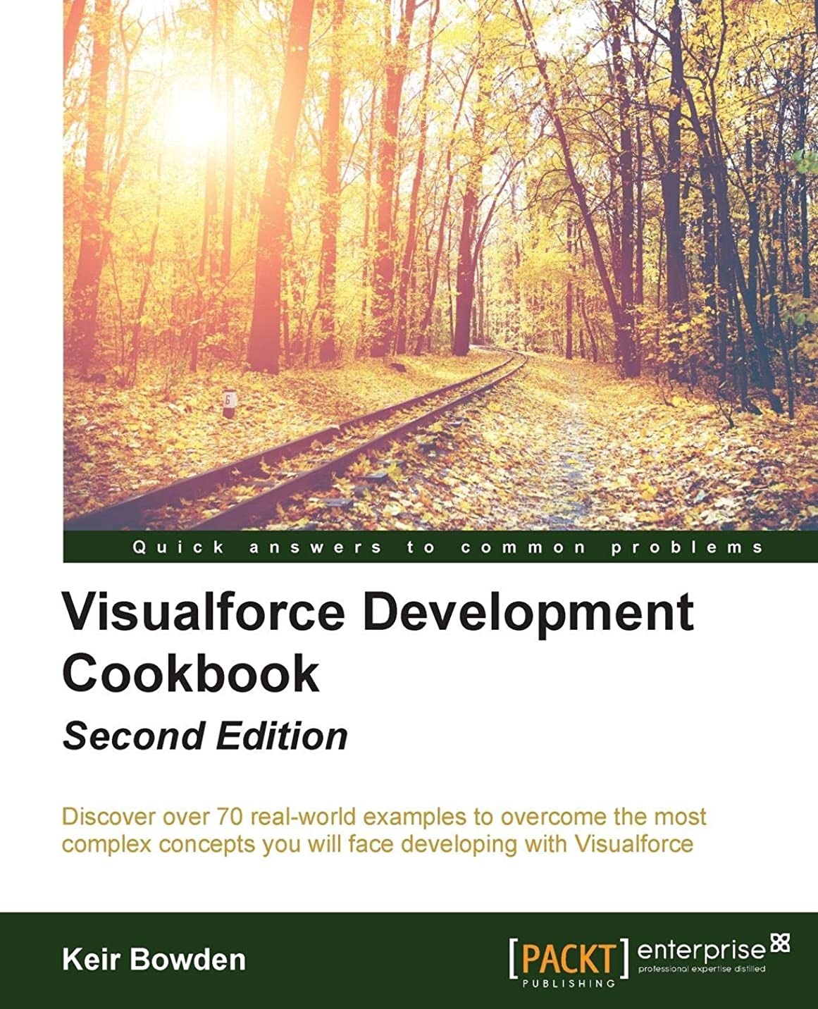 子音開発誠意Visualforce Development Cookbook