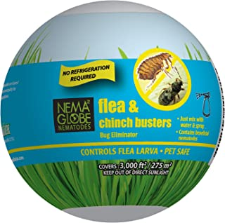 25 Million Beneficial Nematodes (S.carpocapsae) - Nema Globe Flea, Fly and Chinch Buster for Pest Control - New No Refrigeration Required Formula