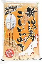 【精米】新潟産 こしいぶき ビニール 10kg 令和2年産