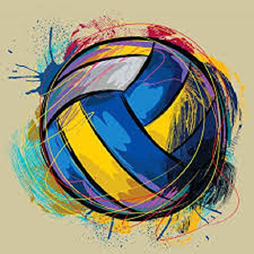Volleyball Jig Saw Puzzle