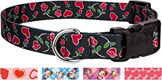 Country Brook Design - Deluxe Roses for My Valentine Dog Collar - Small