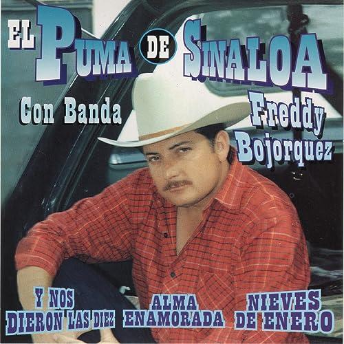 Vestida Y Alborotada By El Puma De Sinaloa On Amazon Music