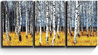 wall26 - Aspen Trees Fall Colors - Canvas Art Wall Decor - 24