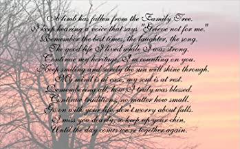 PotteLove Sympathy Gift A Limb Has Fallen from Our Family Tree Beautiful Sunrise Wood Sign Canvas Wall Art Sympathy Gift Family