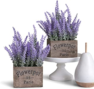 Best Artificial Lavender Potted Plant, Rustic Farmhouse Decor for Home, Kitchen, and Office, Ideal Silk Flower Arrangements, Set of Two Reviews