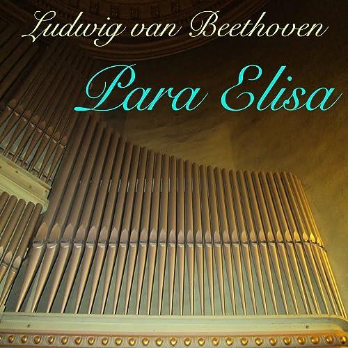 Para Elisa Woo 59 órgão Na Beira Da Lareira A La Orilla De La Chimenea Version By Angel Antonio González On Amazon Music