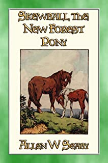 SKEWBALD The New Forest Pony: The Illustrated Adventures of Skewbald the Pony