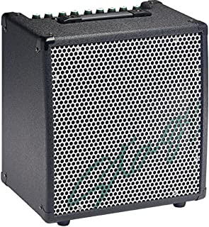 Stagg KBA40 USA 30-Watt HD Combo Amplifier for Keyboard
