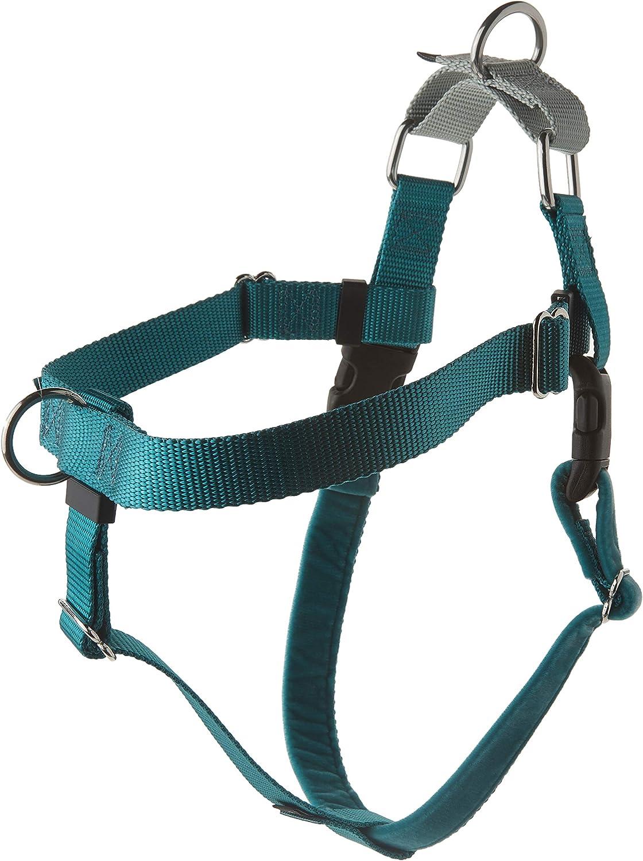 2 Hounds Design HN LG TL Freedom NoPull Harness Only, (1  Wide), Teal, Large
