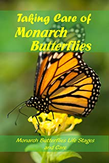 Taking Care of Monarch Butterflies : Monarch Butterflies Life Stages and Care: Guide How to Care for Monarch Butterflies