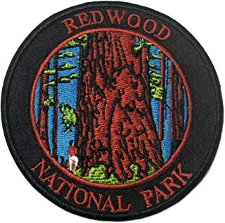 Explore Redwood National Park 3.5