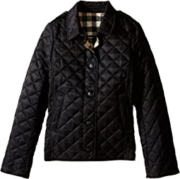 Mini Ashurst New Classic Modern Quilted Coat (Little Kids/Big Kids)