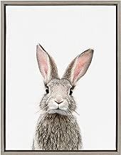 bunny on canvas