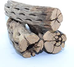 King Sized Natural Cholla Wood XL Large Thick Pieces  3 Pieces of 5-6