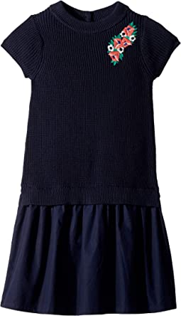 Drop Waist Sweater Dress (Toddler/Little Kids/Big Kids)