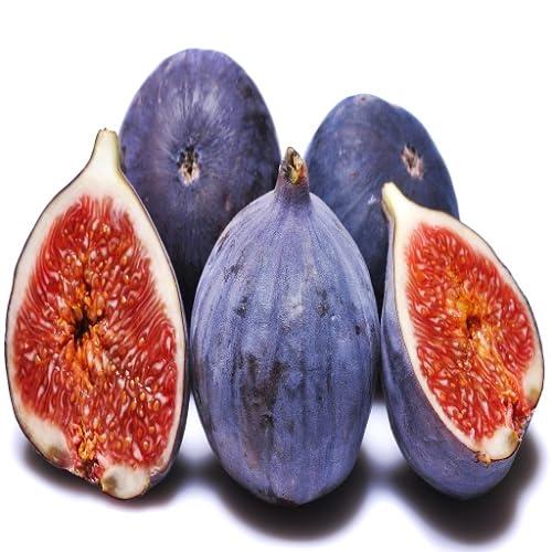 FIG Fruit Application