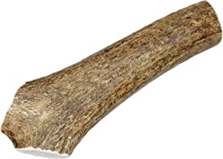 Large, Whole, Single Pack - Grade A Premium Elk Antler Dog Chew for 35 to 65 lb dogs – Naturally shed from wild elk – No Mess, No Odor – Made in the USA