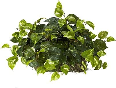Nearly Natural 6708 15インチ Pothos Ledge (フォームセット) シルク植物 グリーン