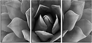 Plant Wall Art Gray Agave Canvas Prints Flower Artwork Canvas Printing Canvas Wall Art Print 24 x 48 Inch Total Deco Gift Wall Decorations for Bedroom Bathroom Livingroom (Black And White, 24x48inch)