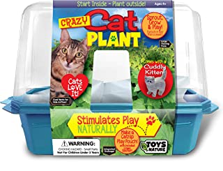 Grow Your Own Catnip Plant - Sprouts and Grows in A Week - Cats Love It - Includes Linen Bag to Make A Catnip Play Pouch