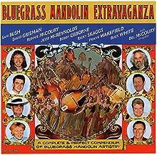 Bluegrass Mandolin Extravaganza