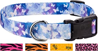 Country Brook Design - Deluxe Dog Collar - Animal Collection