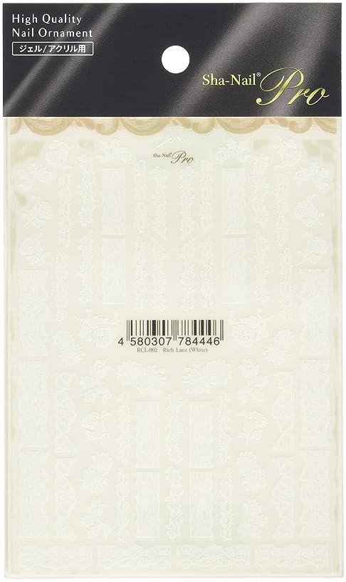 暫定パッケージ条件付き写ネイルプロ リッチレース ホワイト