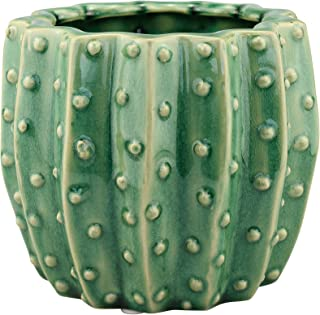 Stonebriar SB-6087A Conservatory Ceramic Green Cactus Planter
