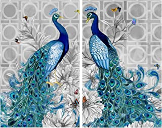 HaiMay 2 Pack DIY 5D Diamond Painting by Number Kits Full Drill Round Rhinestone Embroidery Pictures Arts Craft for Home Wall Decoration, Peacock (12×16inch)
