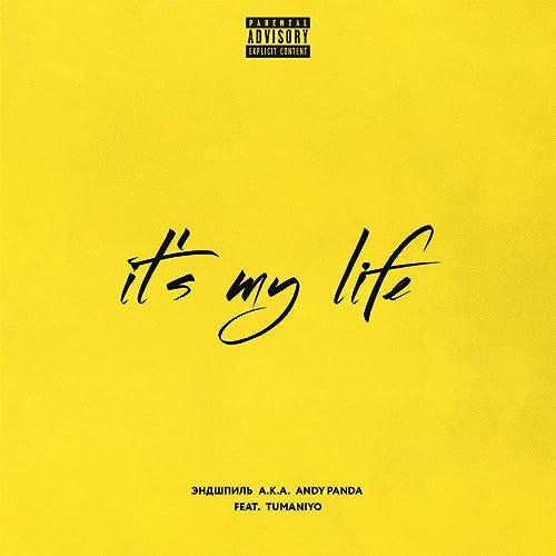 It's My Life (feat. TumaniYO) [Explicit] by Эндшпиль on Amazon Music -  Amazon.com