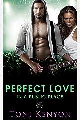 Perfect Love in a Public Place: (Rockstar Romance) (Private Love Book 4) Kindle Edition