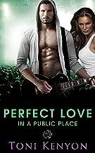 Perfect Love in a Public Place: (Rockstar Romance) (Private Love Book 4)