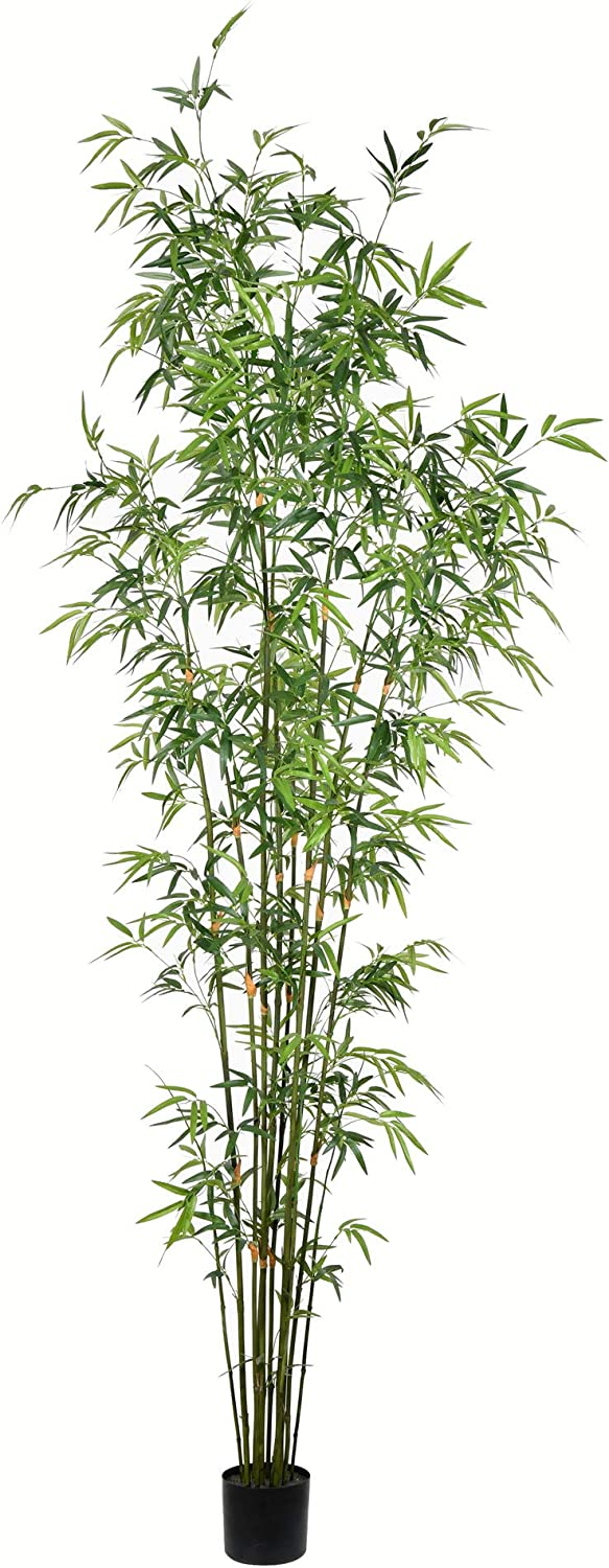 8' Potted Mini Max 61% OFF Bamboo 2053 Tree Leaves Cheap sale