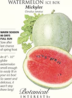 Ice Box Mickylee Watermelon Seeds - 1 gram
