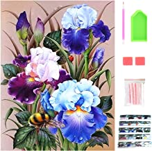 5D Diamond Painting Kits for Adults, Full Drill Diamond Art Kits, DIY Painting by Numbers, Blue Flowers Crystal Crafts for...