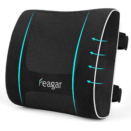 Feagar Lumbar Support Pillows Back Cushion - Memory Foam Pillow Back Support for Office Chair Car Seat Wheelchair, Ergonomics Cushion Lumbar Cushion for Car Recliner, Black