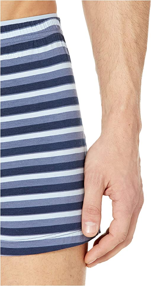 Bold Stripe/Indigo