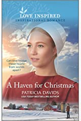 A Haven for Christmas (North Country Amish Book 3) Kindle Edition