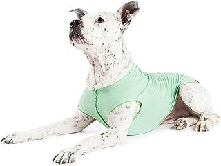 Gold Paw Sun Shield Dog Tee - Pistachio Heather - Size 10
