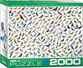 EuroGraphics The World of Birds (2000 Piece) Puzzle