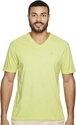 Sublime Wash V-Neck T-Shirt